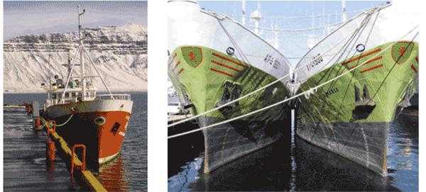 flotabarcos